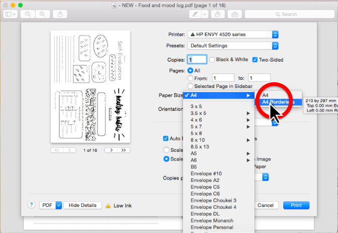 Step 5. Go to the  Paper Size menu , and select  A4 Borderless . (see screenshot)