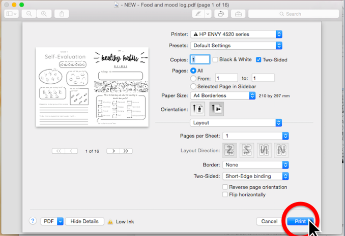 Step 10. You're ready to print! Click  Print  and you're finished. (see screenshot)