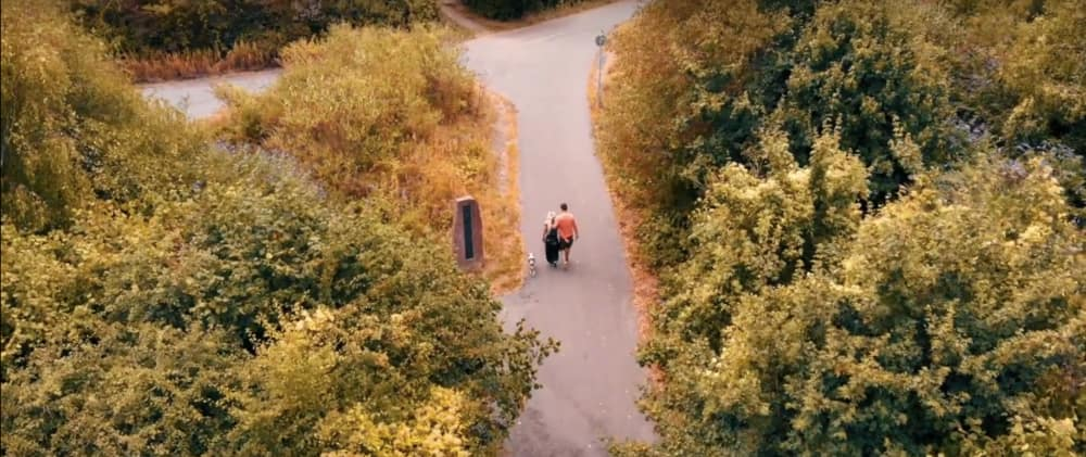 Screenshot taken from Walk of the Week series. Aerial photograph of Ely Trail, leading alongside Ely River