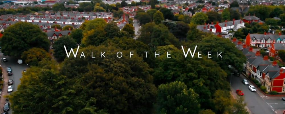 Screenshot taken from Walk of the Week, episode 4: Roath Brook Gardens. Aerial photograph of the public park and surrounding area of Roath.