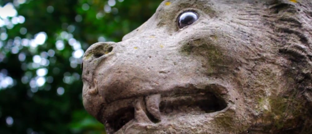 Screenshot taken from Walk of the Week, ep 5. Bute Park. The original animal sculptures on the Animal Wall in Cardiff have glass eyes.