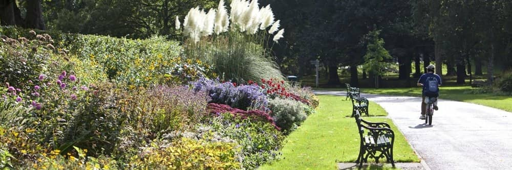 A photograph of the herbaceous border in Bute Park, as you would find it today.