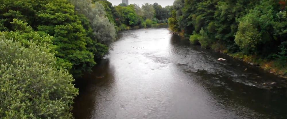 Screenshot taken from Walk of the Week, ep 5. Bute Park. The River Taff - Aerial photography.