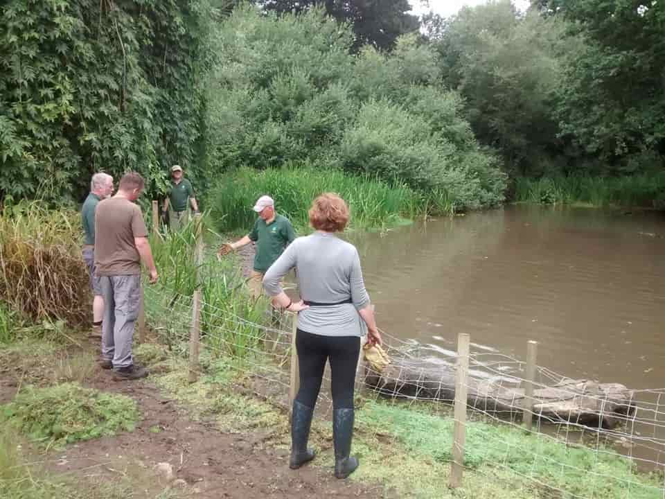 Friends of Heath Park Woodlands helping to maintain the pond (taken from the Facebook page)