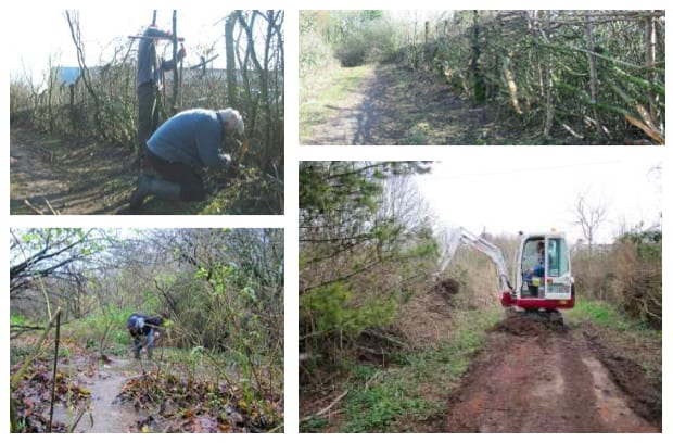 Photographs of the Friends of Howardian Local Nature Reserve doing all sorts to maintain and develop the land. (source:  howardianlnr.org.uk )