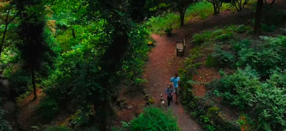 Screenshot taken from Cefn Onn Park episode (Walk of the Week). Aerial view of the paths and trees that you can find whilst walking around Cefn Onn.