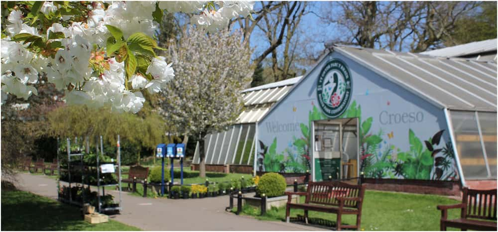 Roath Park Conservatory (source:  celfcreative.com )
