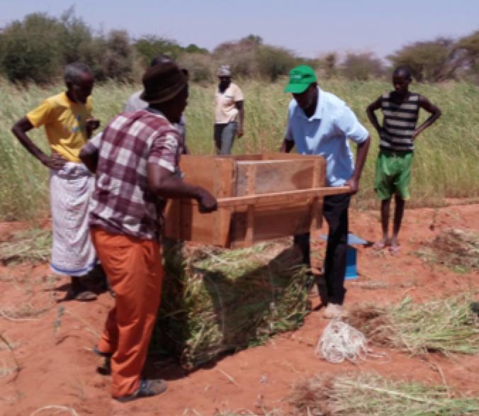 Use case 2:Scaling farmer fodder schools -