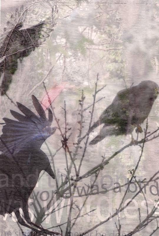 'Wordless Birds 1'  Mixed Media 297x210mm