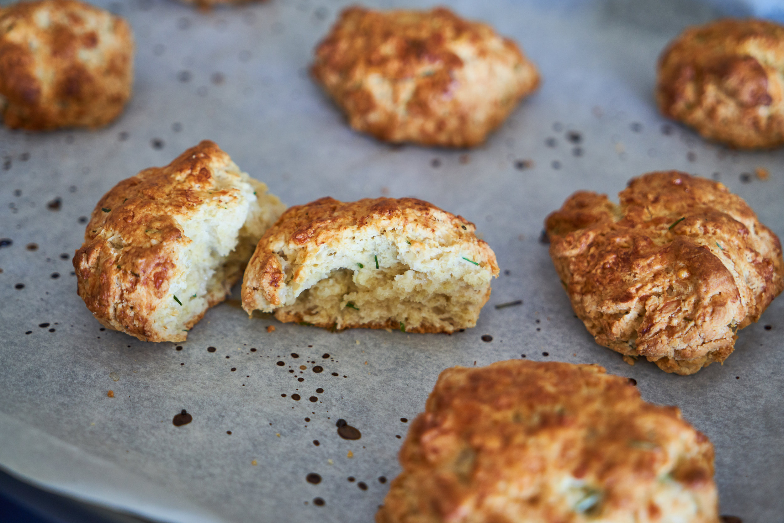 Savory Sourdough Scones/Biscuits | In Carina's Kitchen