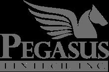 PEGASUS FINTECT INC.png