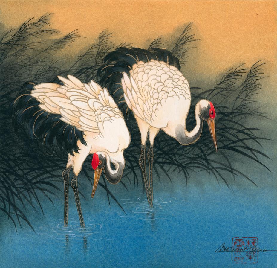 """Morning Cranes"""