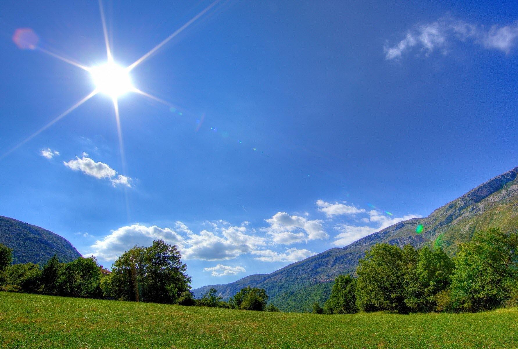 sunny day 2.jpg