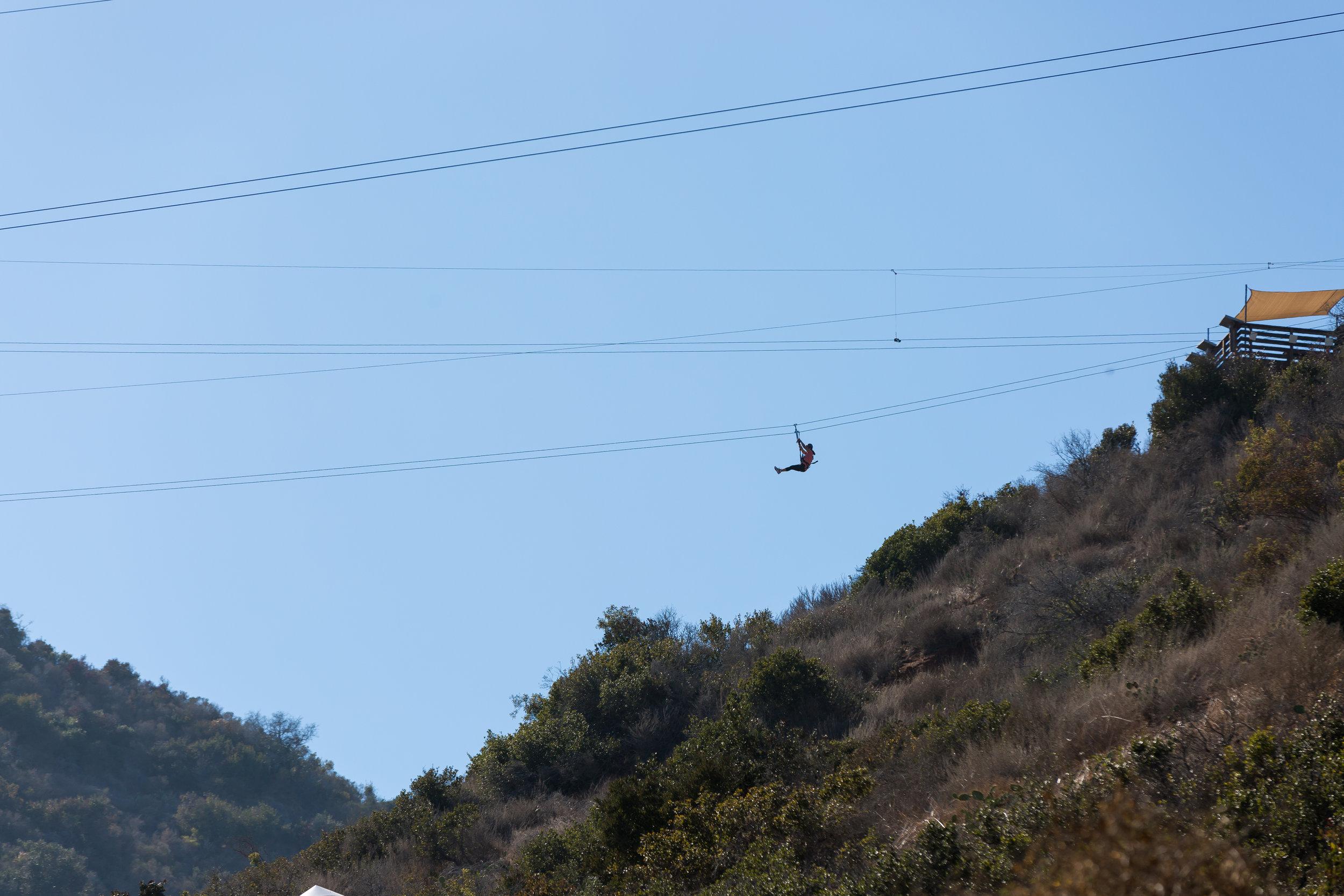 ABE1_Catalina_Zip_Line_Aerial_Adventure-86.jpg