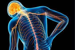 Pain and biopsychosocial model