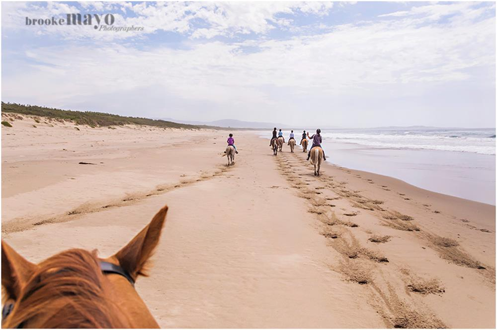 Coolangatta horseback riding
