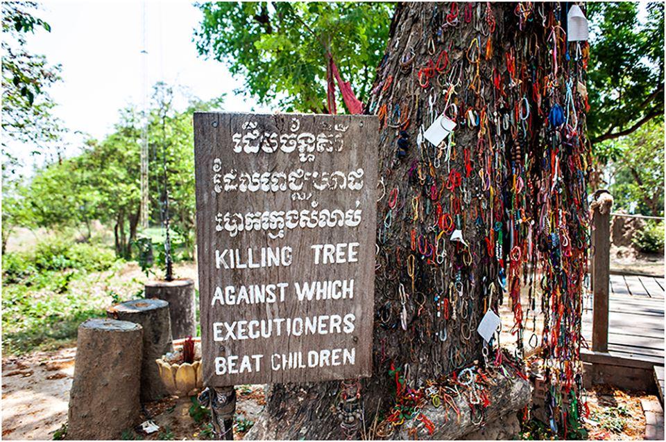 the Killing tree Phnom Penh