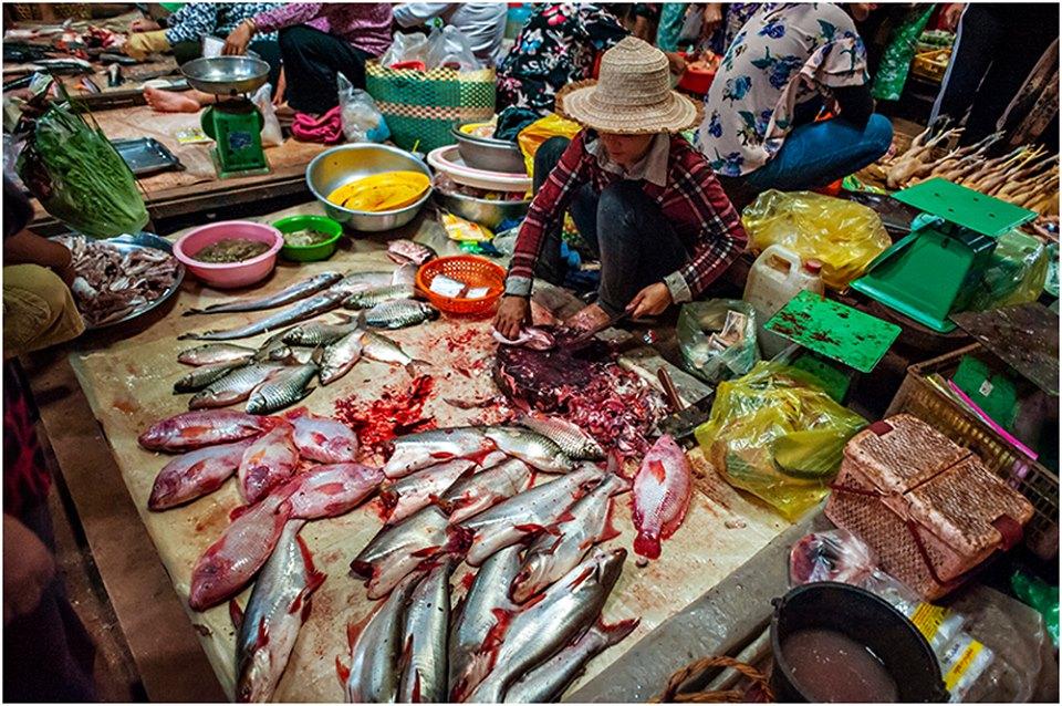 fish market siem reap