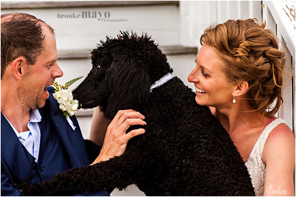 Bride and Groom with dog portrait