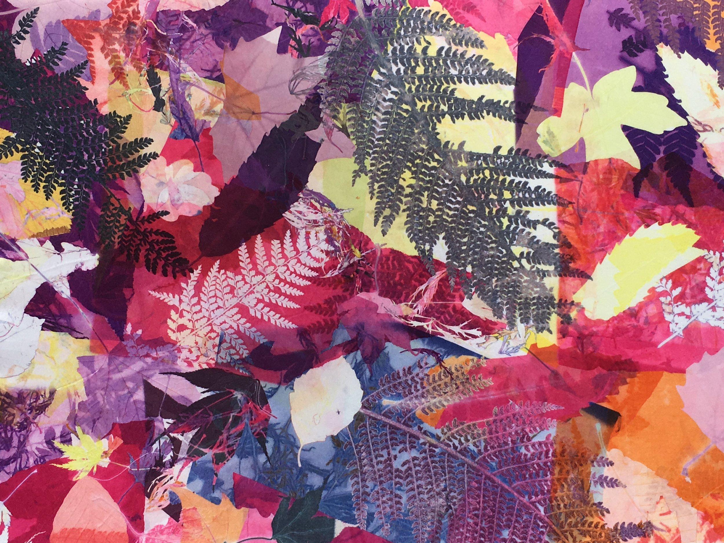 2017 - Art Prize - Clare Walsh  - Ferns.JPG