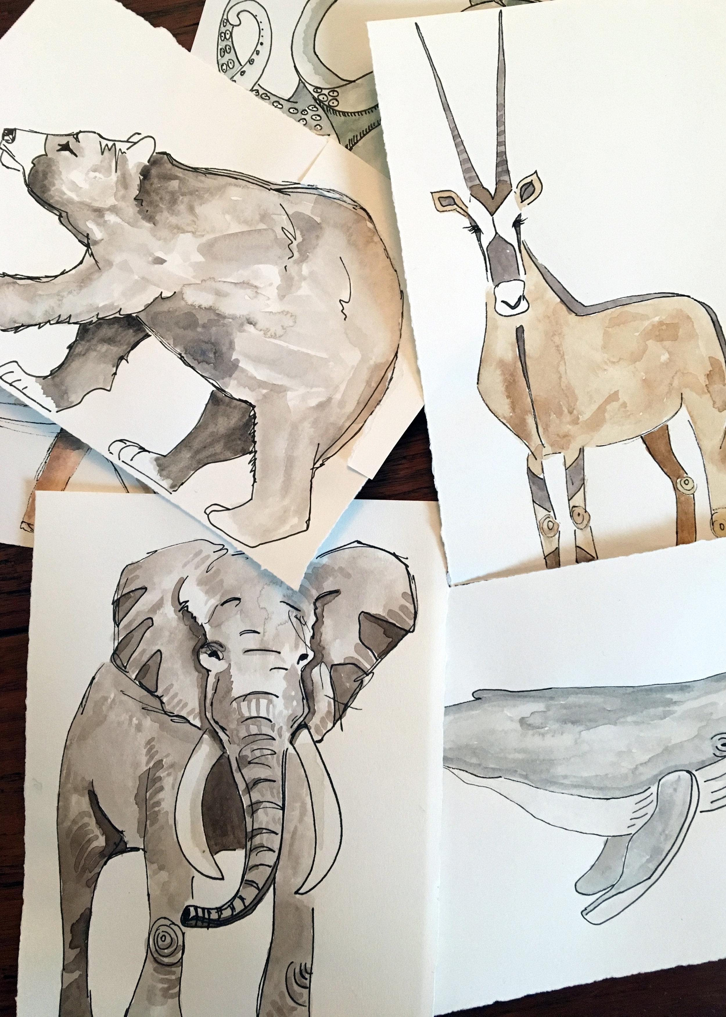 drawings-crop.jpg