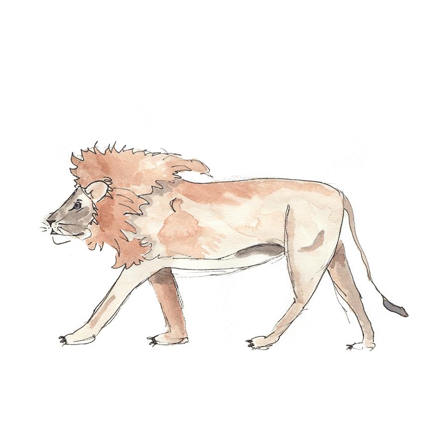 Lionsquare.jpg