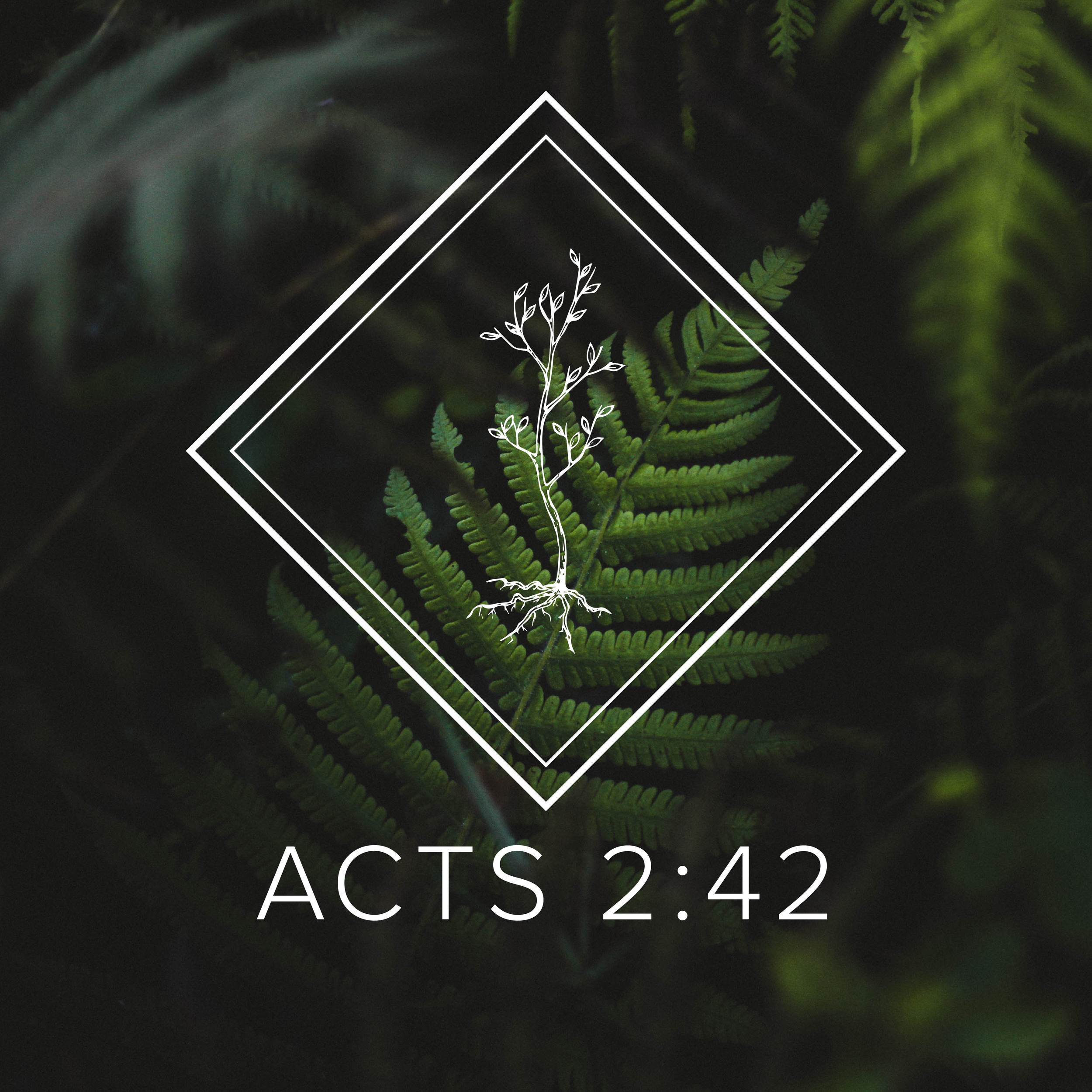 Acts 2:42 Groups