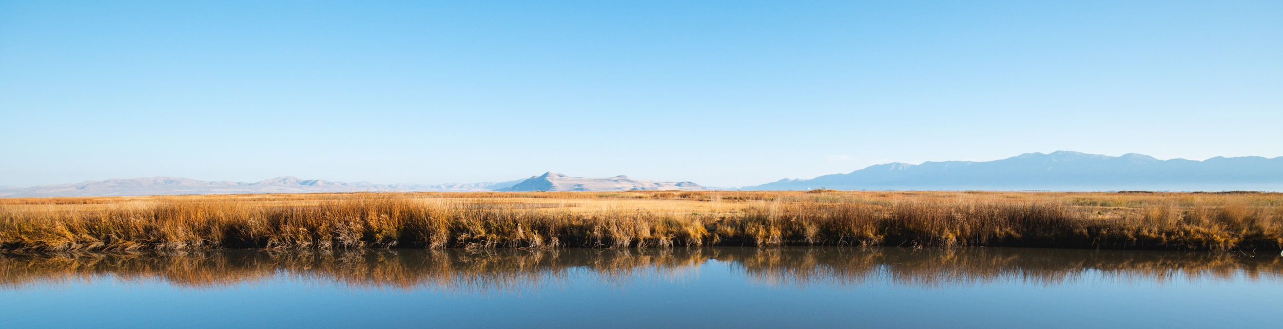 Bear-River-Migratory-Bird-Refuge-44.jpg