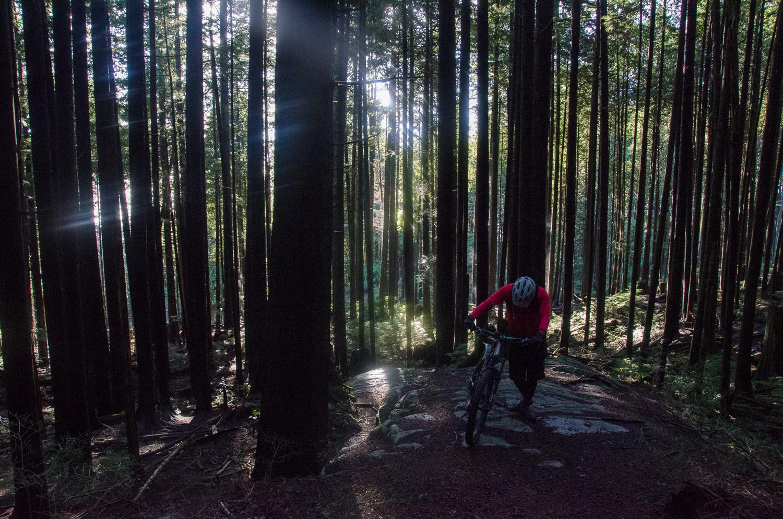 Cypress mountain struggle.jpg