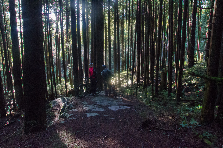 Cypress mountain contemplation.jpg