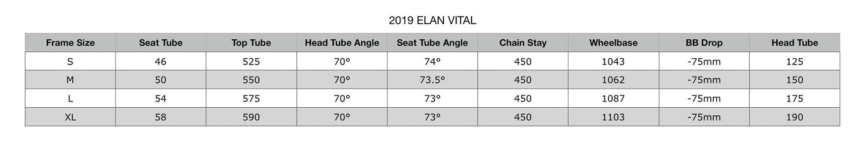 2019 Elan Vital Geometry.jpg