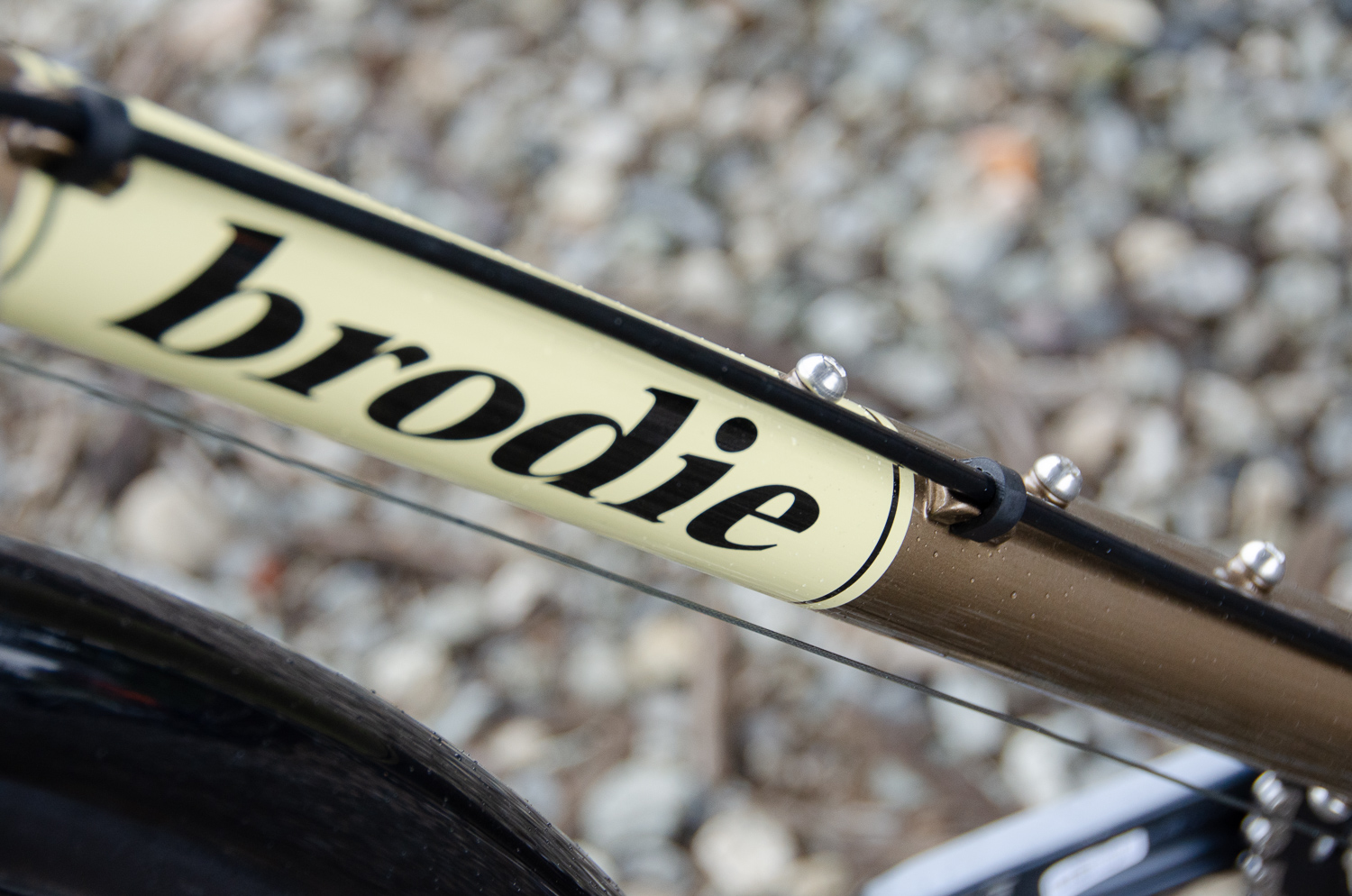 Elan downtube graphics.jpg