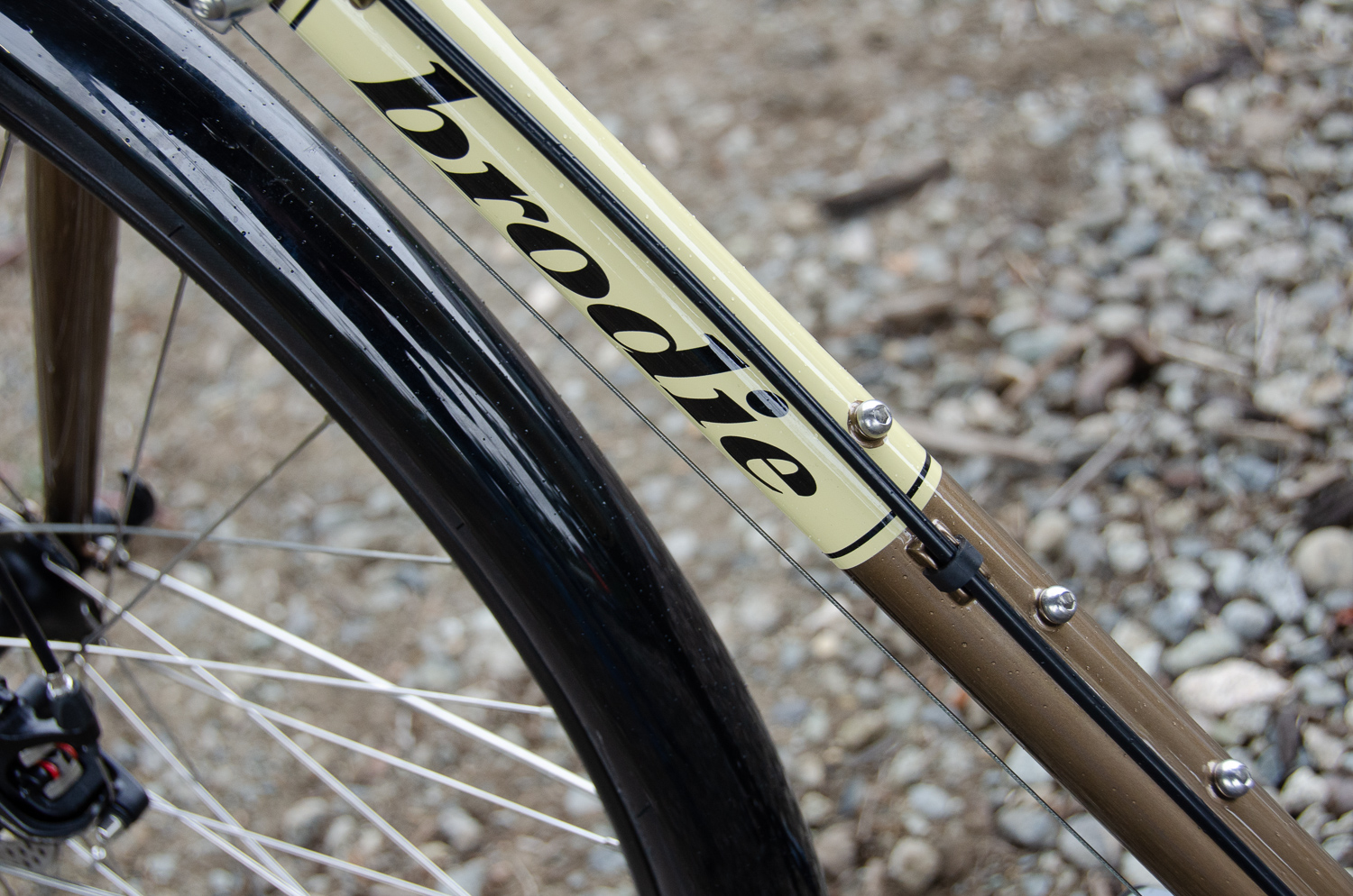 Elan downtube and fender.jpg
