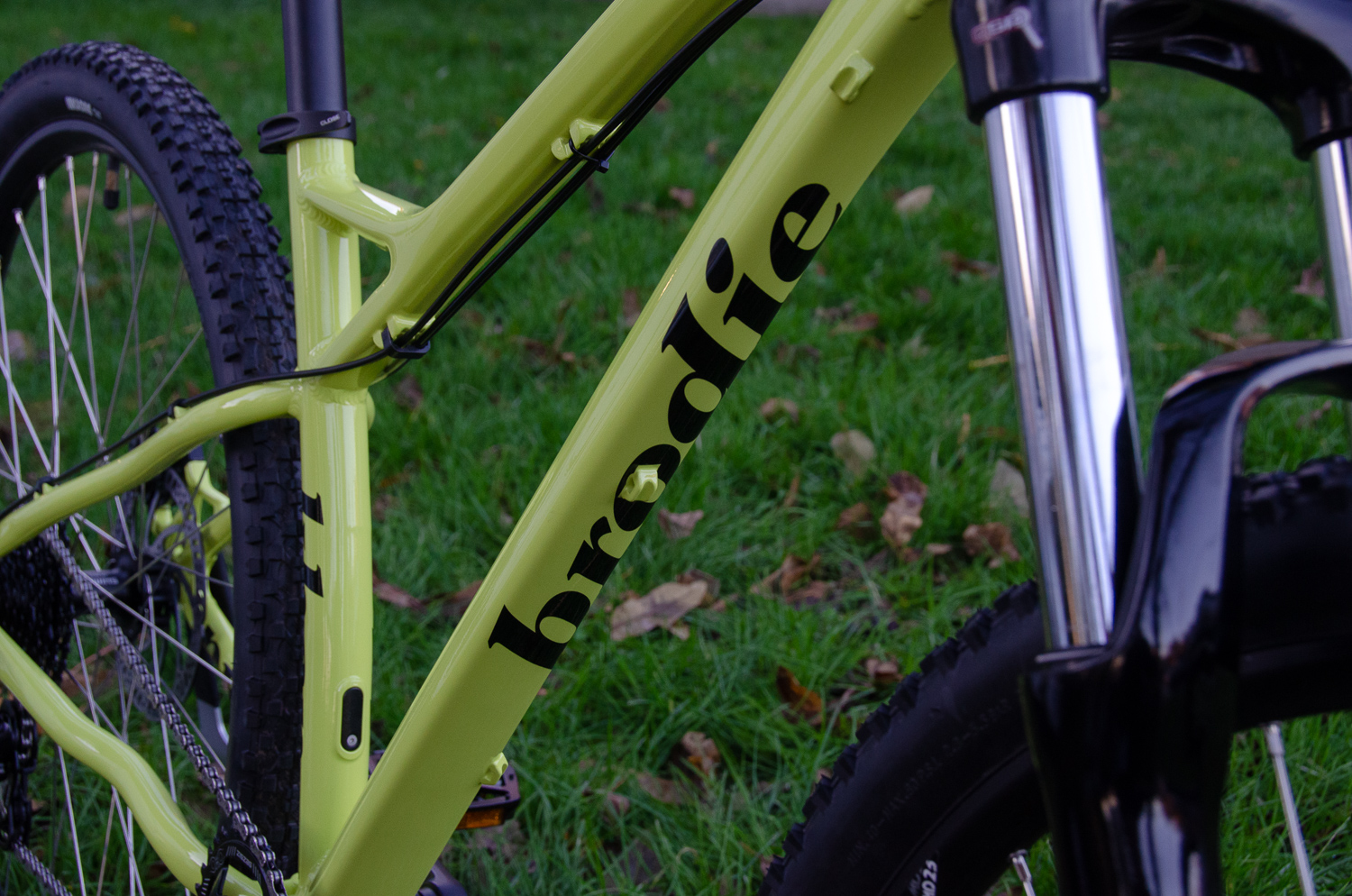 Khan Sport downtube.jpg