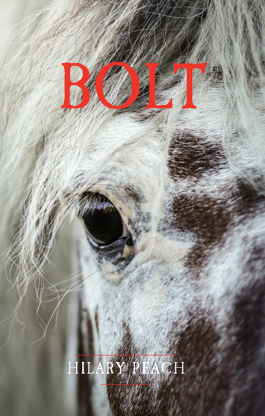 Bolt cover - title in colour_Page_1.png