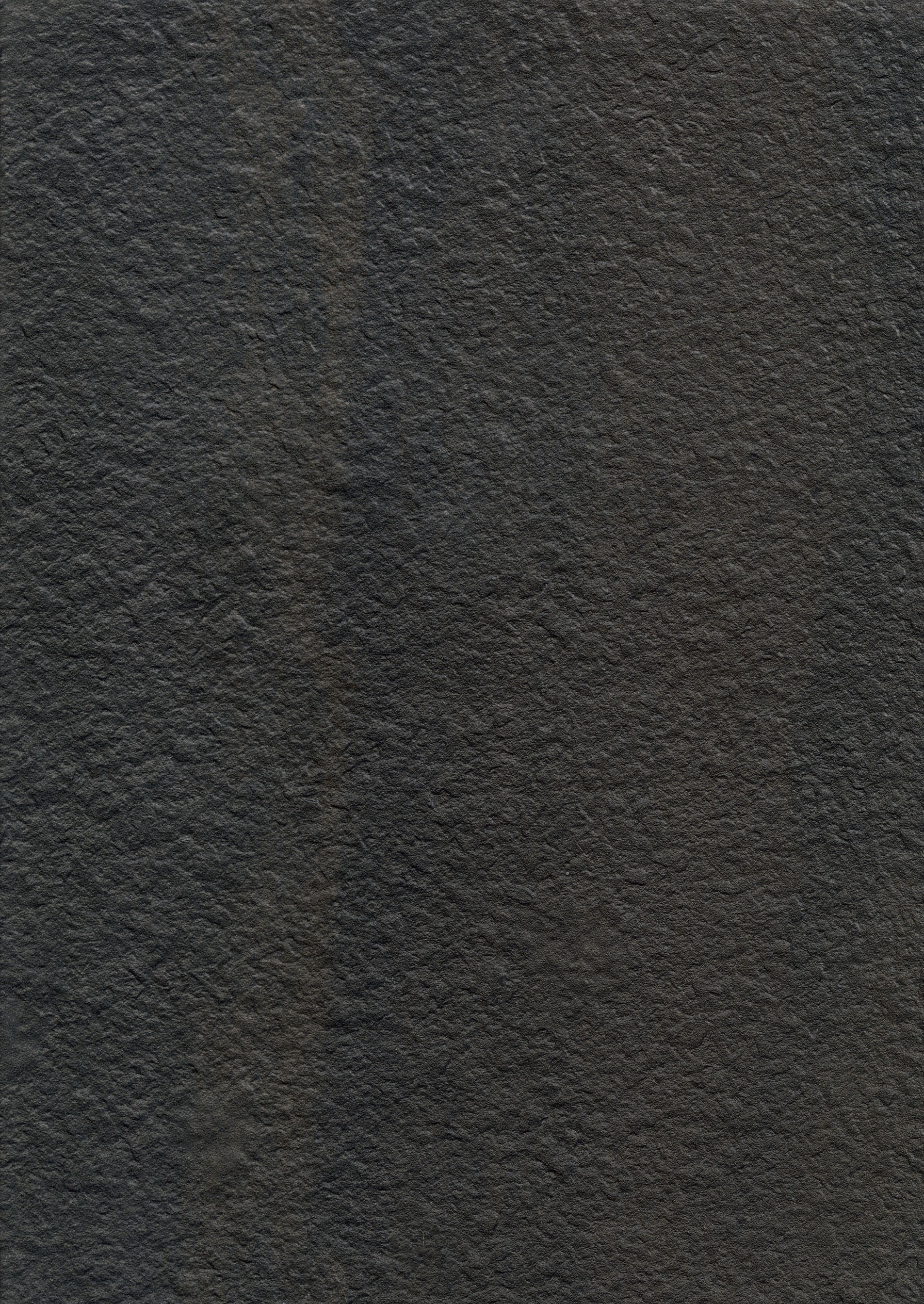 """18"""" x 36"""" Bocciardato Field Tile"""