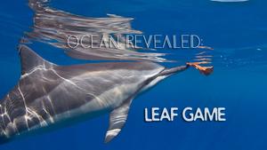leaf+game.png