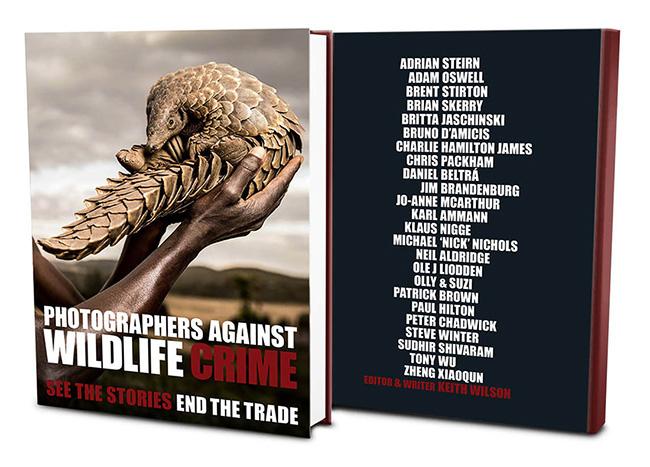photographers-against-wildlife-crime.jpg