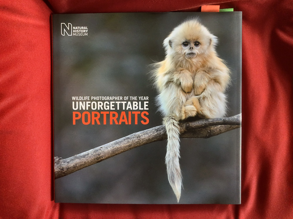 Unforgettable Portraits, collection of wildlife portraits