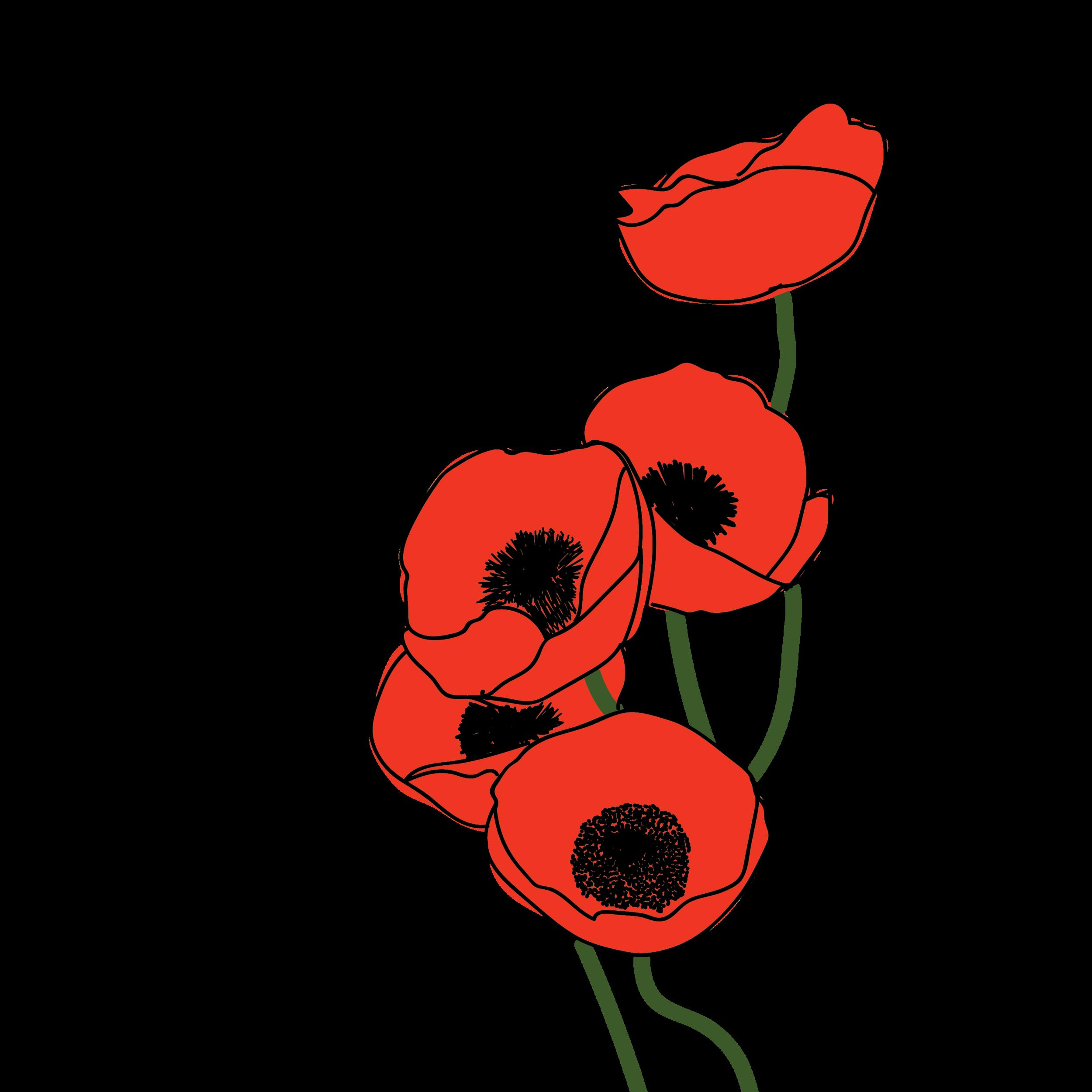 Poppy-15.png