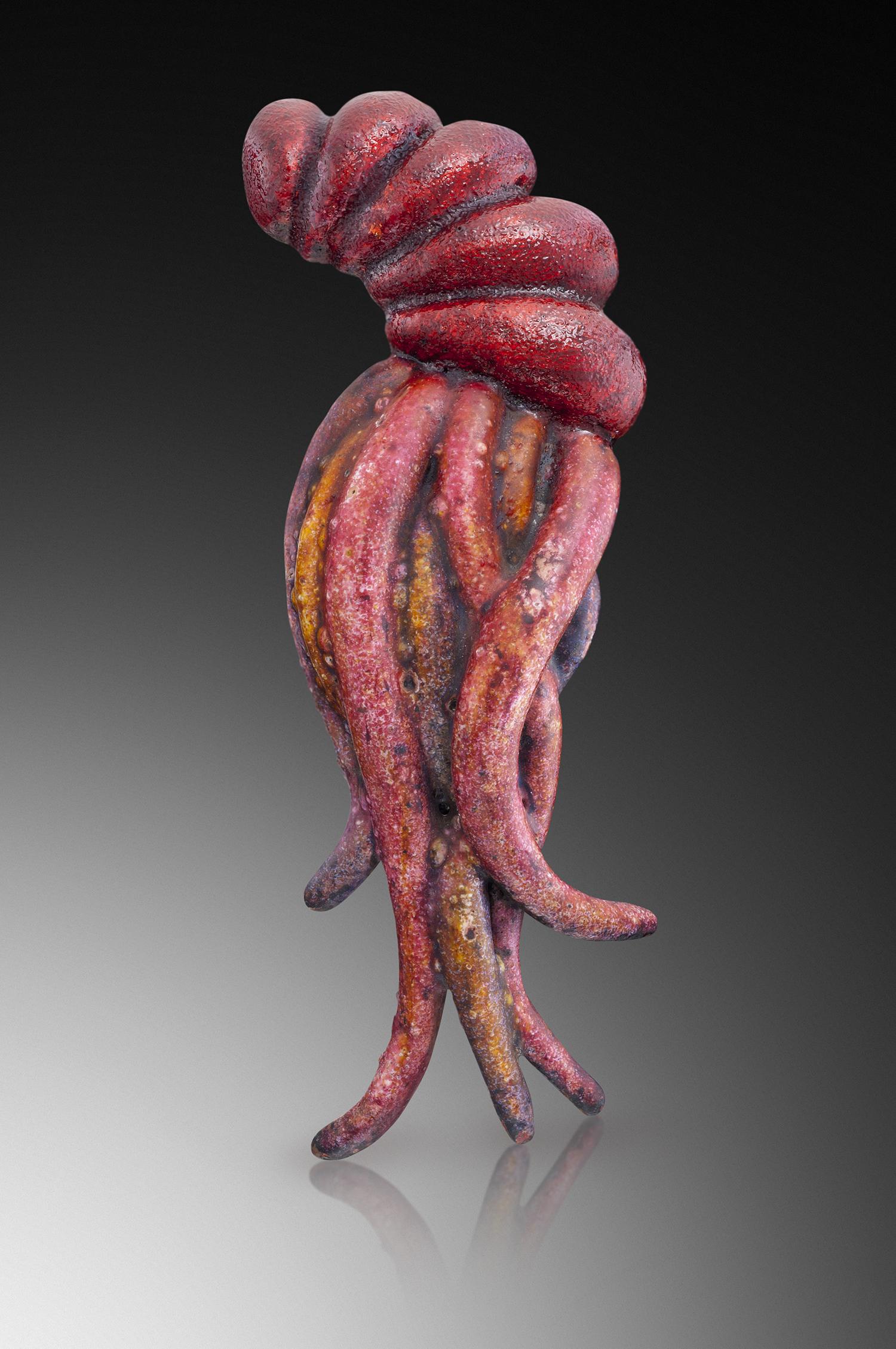 Regal Squid gradated .jpg