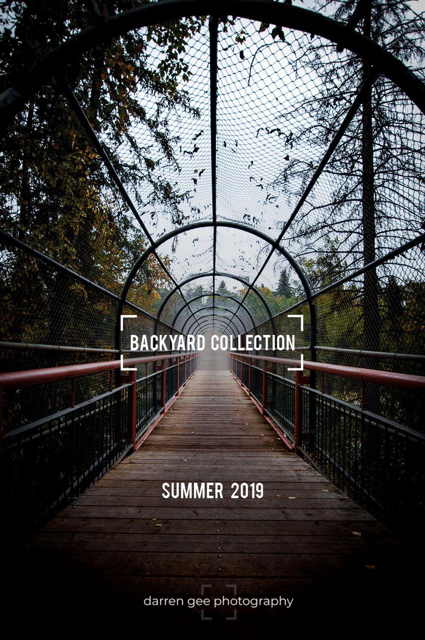 Backyard Collection.jpg