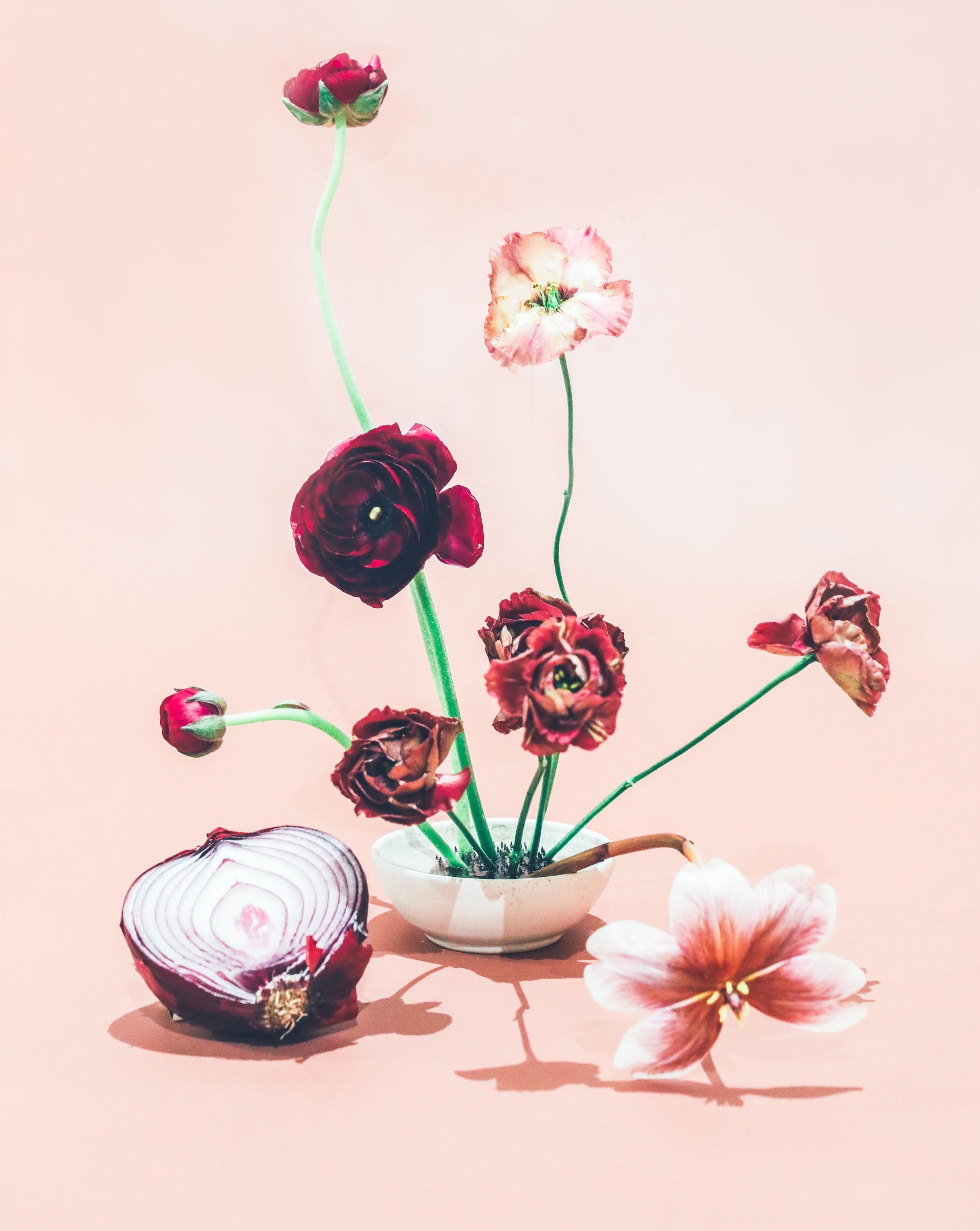 Floral Sculptures - Ikebana with Saree Silverman
