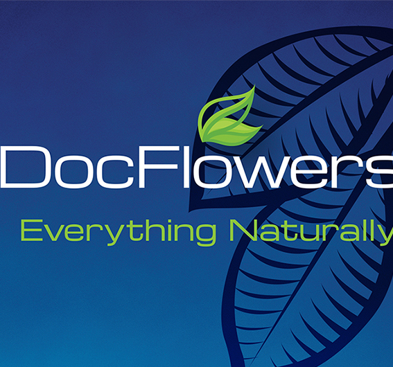 Logo Design and Packaging  Doc Flowers Herbal Products