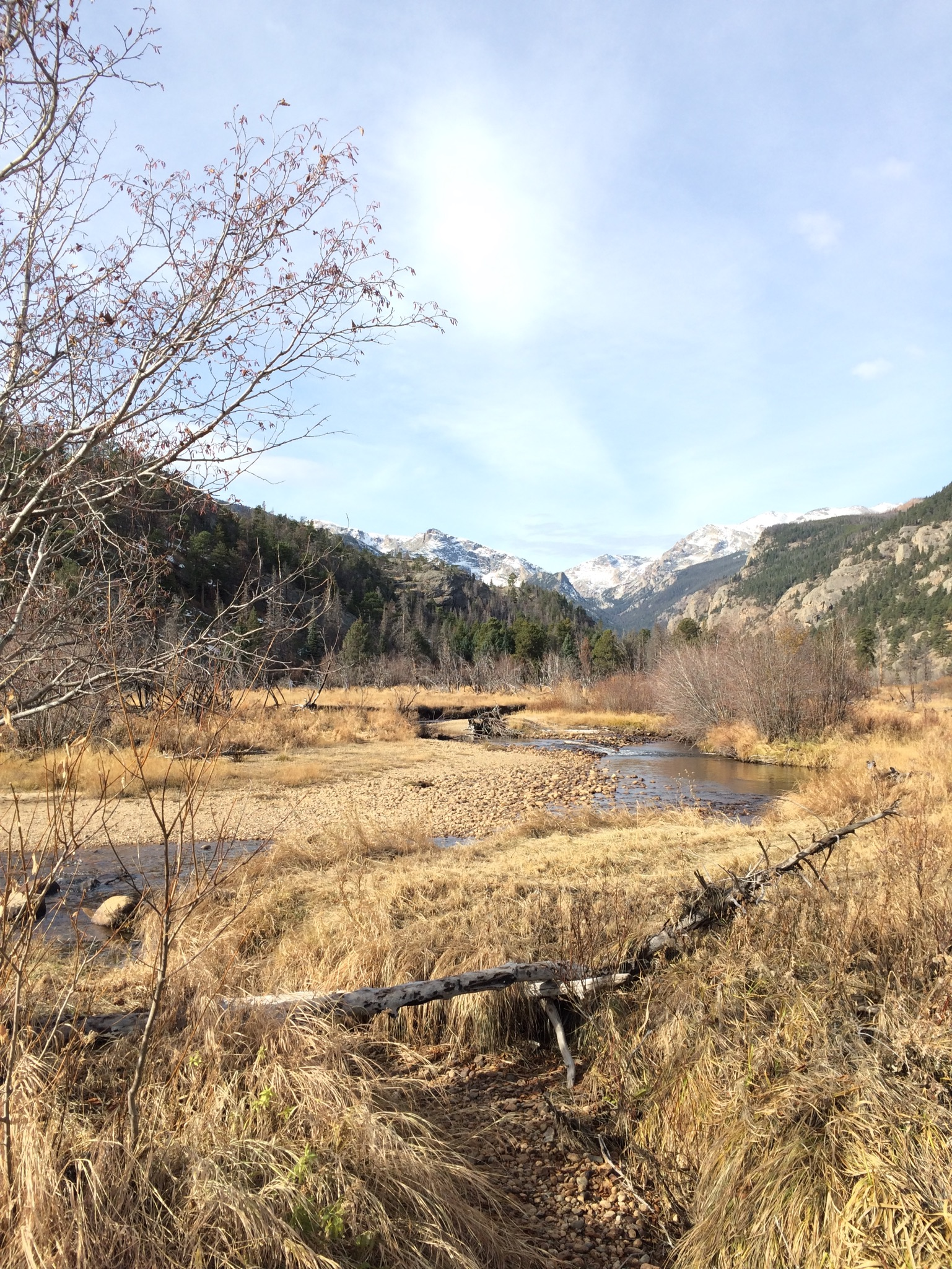 From the trail head we hiked past beaver dams.
