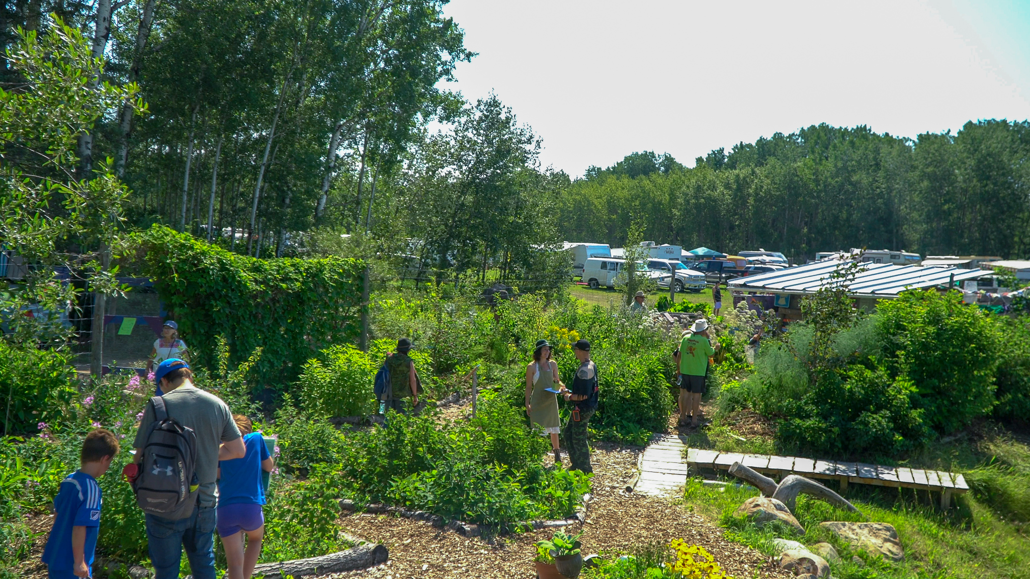 Each year, hundreds of visitors to Ness Creek get to experience and be inspired by the forest garden model of food production first-hand.