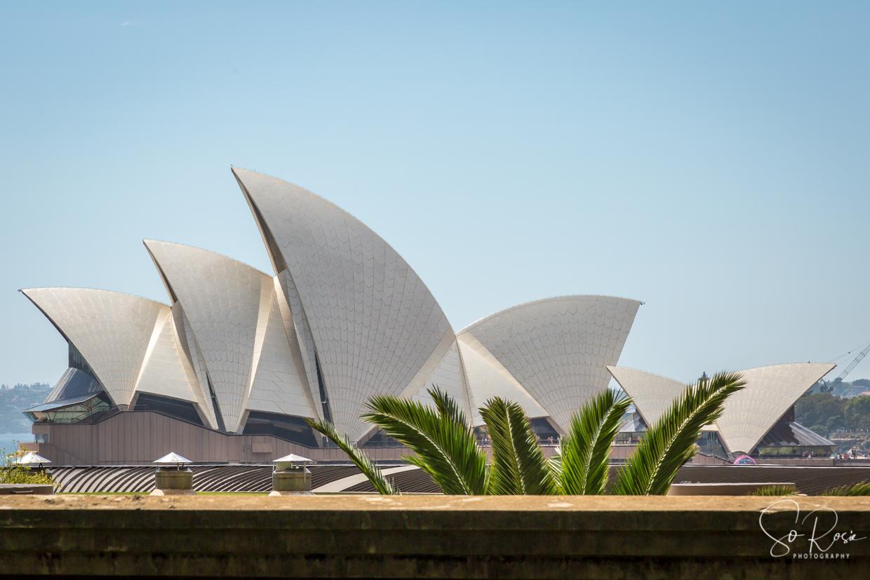 Sydney1-0325.jpg