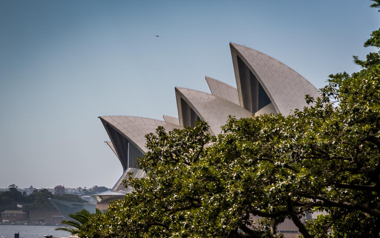 Sydney1-0343.jpg