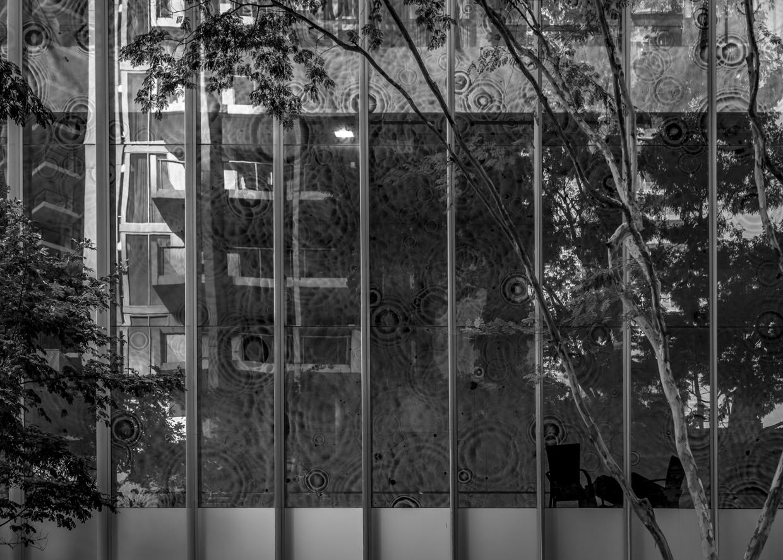 Reflections Walk-0110.jpg