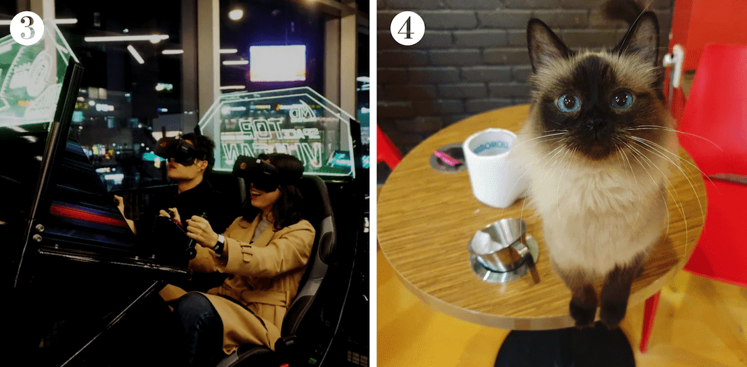 Seoul travel guide to dating in Hongdae. Spend time with your date at a VR arcade or this cute cat cafe in Seoul! Image credit: (3)  Klook ; (4)  청춘고양이카페 홍대점